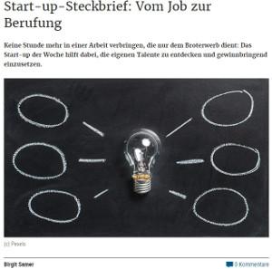 Screenshot Startup Steckbrief die Presse